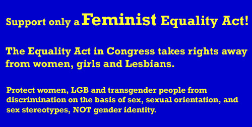 Support only a Feminist Equality Act