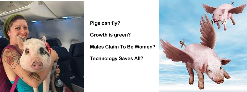 Pigs Can Fly? Growth is Green?