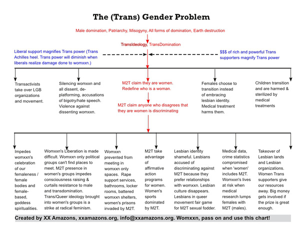 The (Trans)Gender Problem Chart